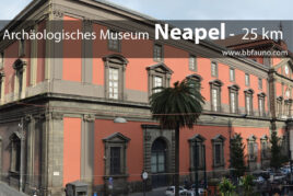 Archäologisches Museum von Neapel - 25 km