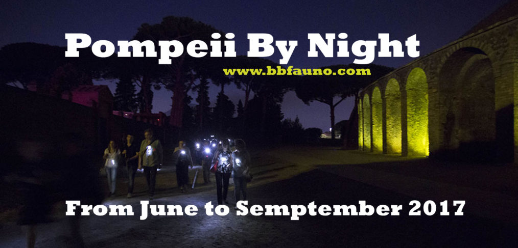 Pompei by Night 2017