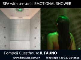 Guesthouse Pompeii emotional shower