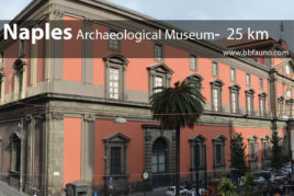 Archaeological Museum of Naples - 25 km