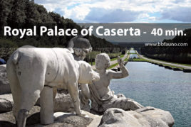 Royal Palace of Caserta - 40 minutes