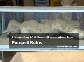 3 November 2019 Pompeii excavations Free