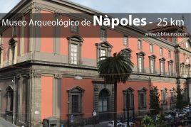 Museo Arqueológico de Nápoles - 25 km