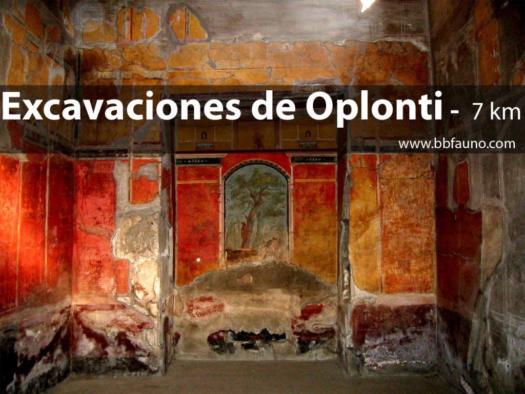 Excavaciones de Oplontis
