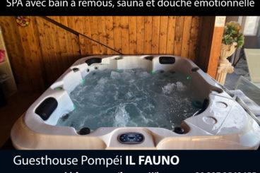 SPA mini-piscine bain à remous