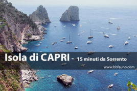 Capri - 15 minuti da Sorrento