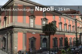 Museo Archeologico di Napoli  - 25 km