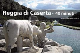 Reggia di Caserta - 40 minuti