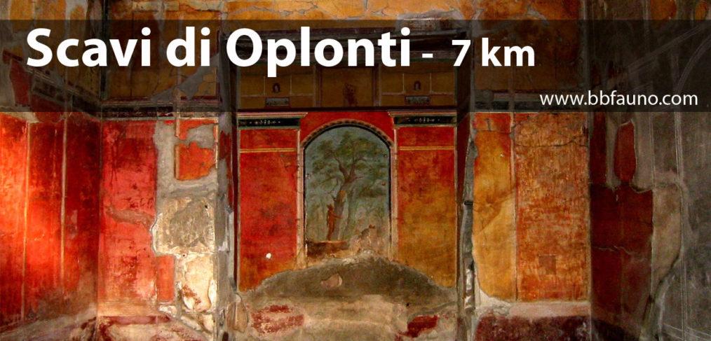 Scavi di Oplontis