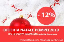 OFFERTA NATALE POMPEI - 12%